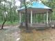 বর্নালী ২